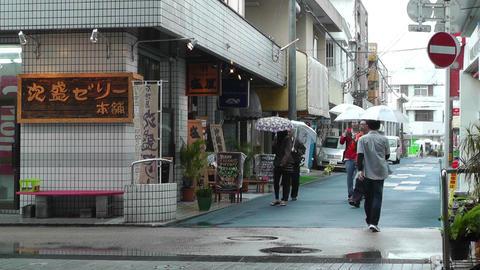 Ishigaki Okinawa Islands 15 Stock Video Footage