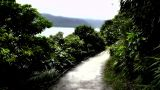 Japanese Garden stylized 05 seaside Footage