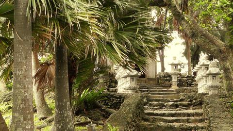 Japanese Shrine in Japanese Garden stylized 01 Stock Video Footage