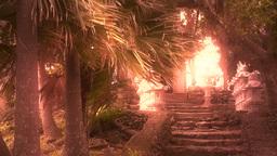 Japanese Shrine in Japanese Garden stylized 07 Live Action