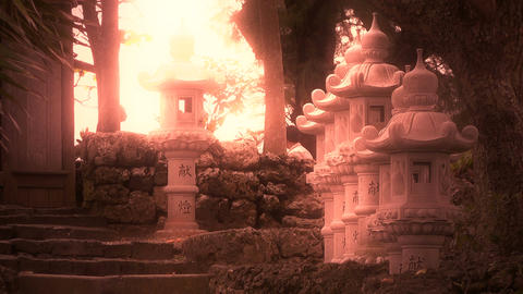 Japanese Shrine in Japanese Garden stylized 09 Footage