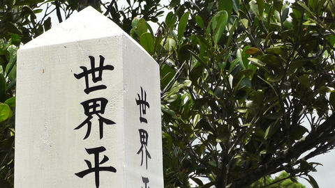 Japanese Text carved on a tree pole 01 Footage