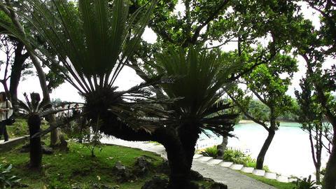 Kabira Beach Bay Ishigaki Okinawa Islands 11 pan handheld Stock Video Footage