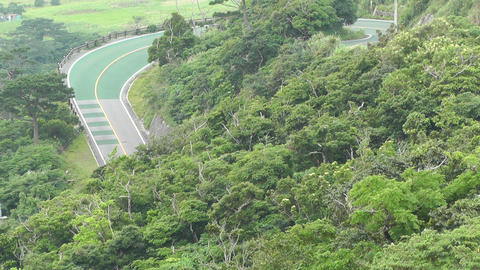 Lush Tropical Area with Road Stock Video Footage