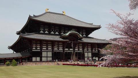 Great Buddha , Todai ji temple , Nara koen park , Nara , Japan , Asia Filmmaterial