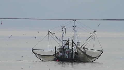 Traditional shrimp boat in Northern Germany Footage