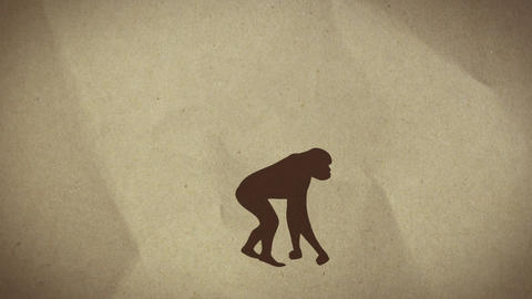 Evolution Animation
