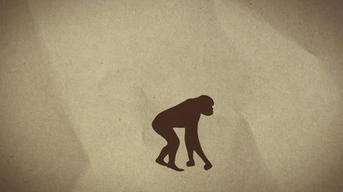 Evolution Animation