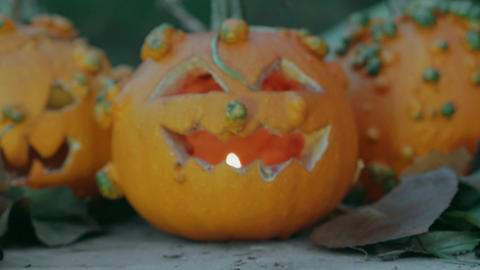 Halloween pumpkins over a tree trunk with autumn decoration close up Footage