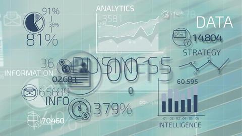 Business infographics 動畫