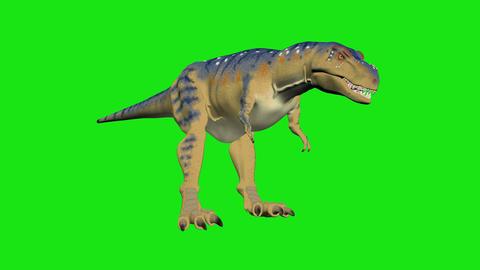 dinosaur dancing hromakey Animation