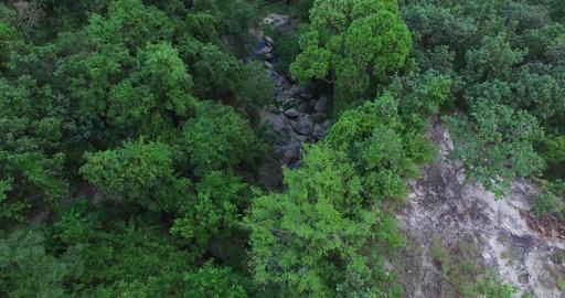 aerial tilt - huay kaew waterfalls Footage