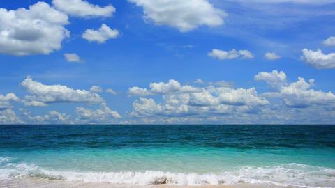 Tropical beach Live Action