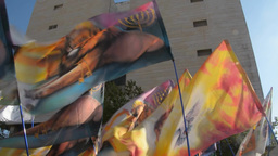 Waving of different colorful banners - the Lion of Judah Footage