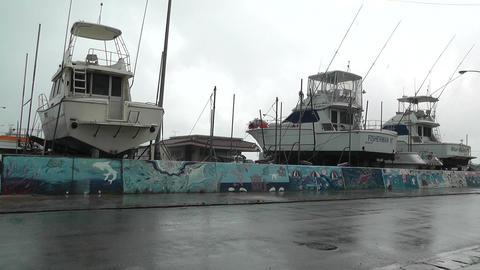 Port in Okinawa Islands 02 Stock Video Footage