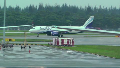 Singapore Changi Airport 14 indigo Stock Video Footage