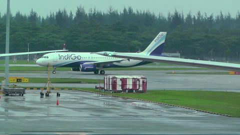 Singapore Changi Airport 14 indigo Stock Video Footage