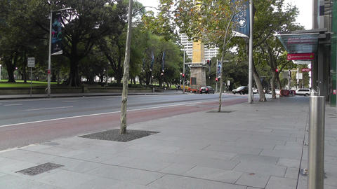 Sydney Downtown Elizabeth Street at Hyde Park 01 Stock Video Footage