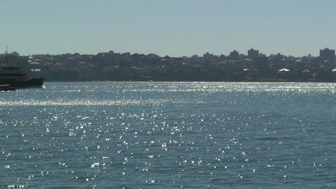 Sydney Harbour with Ferry Stock Video Footage
