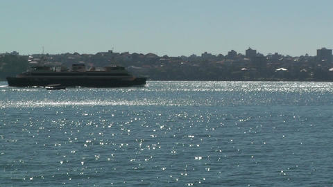 Sydney Harbour with Ferry Footage