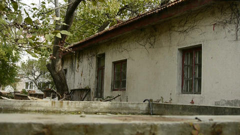 swing tree and house In courtyard,nostalgic windows,Vine Stock Video Footage