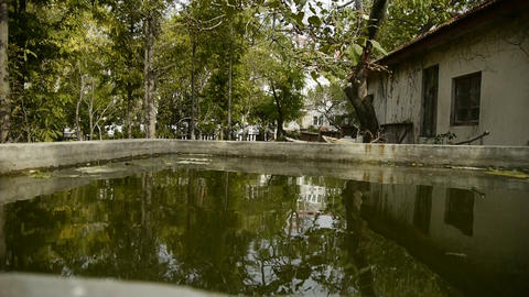 Trees and house reflected in pool,rippled,like a mirror Stock Video Footage