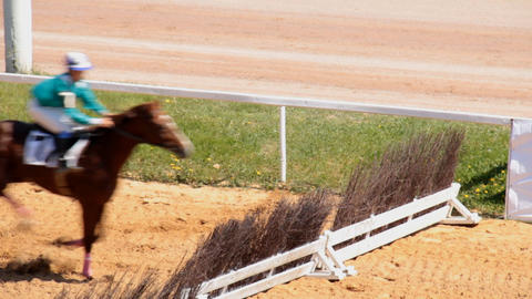 Horse riding on the racetrack dramatik footage Stock Video Footage