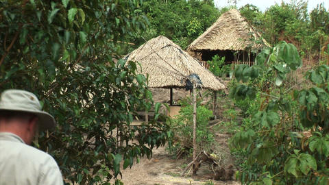 Brazil: straw houses Stock Video Footage