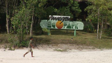 Brazil: Amazon EcoPark Stock Video Footage