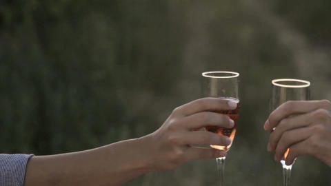 Young couple toasting with wine and kissing Stock Video Footage