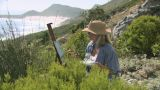 Artist painting on hillside Footage