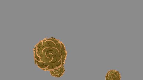 Tumbleweeds Animation