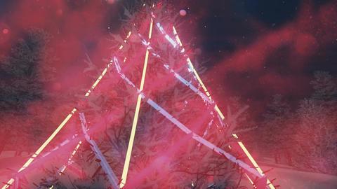Illuminated Christmas tree at night. Close up Footage
