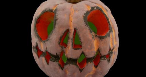 Pumpkin Dolly Alpha stock footage