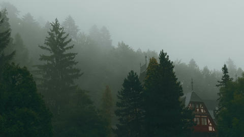 Peles Castle And A Misty Pine Tree Forest In Sinaia, Transylvania, Romania - Eas stock footage