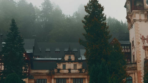 Peles Castle and a Misty Pine Tree Forest in Sinaia, Transylvania, Romania - Pan Footage