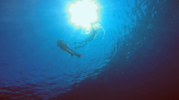 Dancing Underwater In The Red Sea stock footage