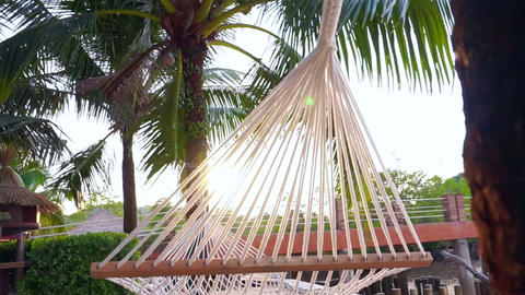 Video Hammock hung between palm trees on a tropical beach in morning sunlight Footage