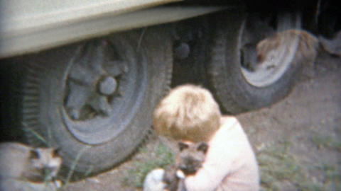 1963: Blonde boy rescues cats trapped under truck tires Footage