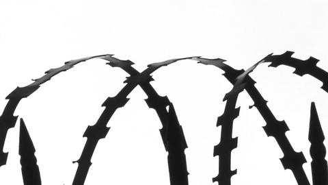 Barricade Made From Barbed Wire Against A White Hi-key Background stock footage