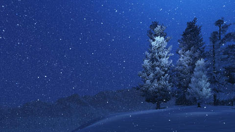 Pinewood High In Mountains At Snowfall Night stock footage
