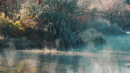 Cold Morning At The River stock footage