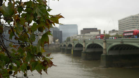 London Westminster Bridge stock footage