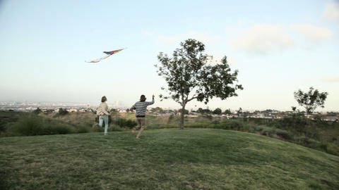 Young couple running with kite in field Stock Video Footage