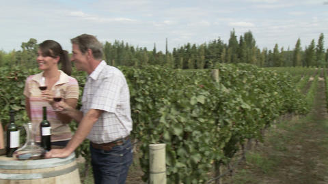 People wine tasting in a vineyard, raising glasses to the... Stock Video Footage