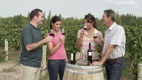 People wine tasting in a vineyard Stock Video Footage