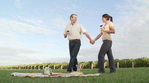Couple drinking wine at picnic in vineyard Stock Video Footage