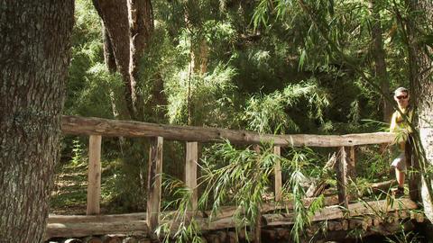 Hikers walking across bridge in forest Stock Video Footage