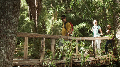 Hikers walking across bridge in forest Stock Video Footage