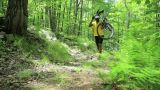 Male cyclist carrying bike through forest Footage
